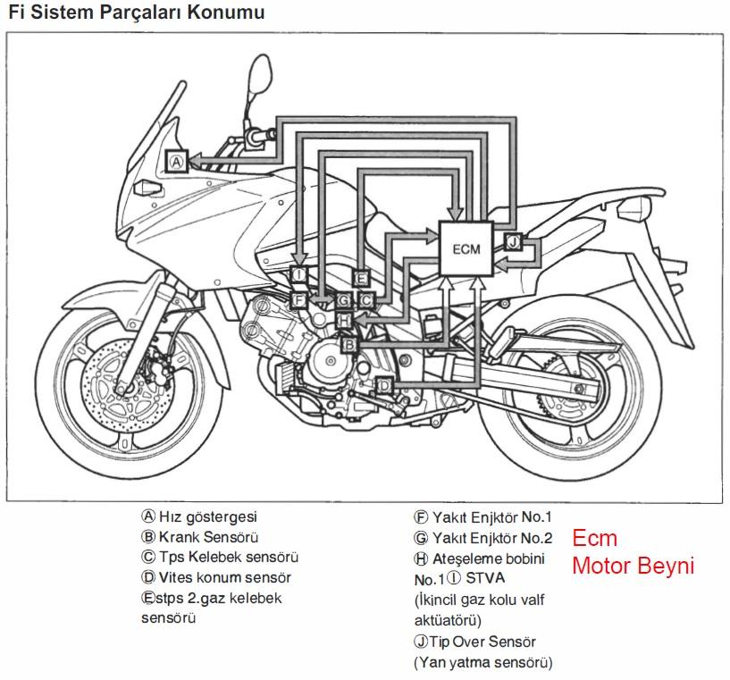 Suzuki v-strom dl650 Enjeksiyon sistem parça konumları
